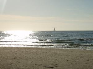 sea-sails